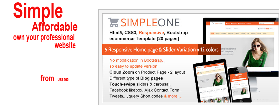 wordpress simple website package
